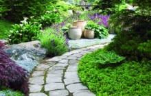 Các bước tạo một sân vườn nhiệt đới