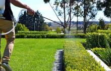 Chăm sóc và bảo trì sân vườn