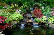 Hồ cá ngoài trời dành cho sân vườn hiện đại