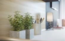 Chậu trồng cây cảnh đơn giản hiện đại